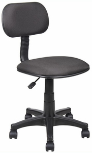 Economic Student Task Chair [B205]