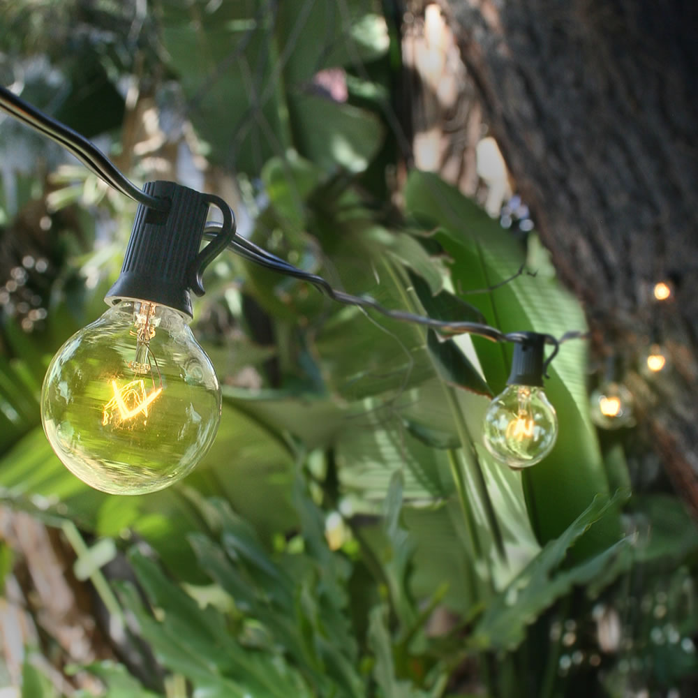 Globe String Lights With Black Cord : 10 Socket Outdoor Patio String Light Set G40 Globe Bulbs 12 ft Black Cord eBay