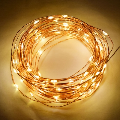 33 Ft 100 Led Warm White Waterproof Copper Wire Micro