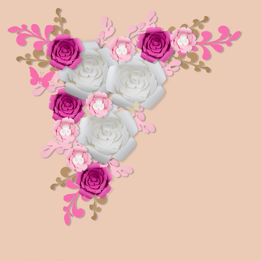 12 pc combo white hot pink rose paper flower backdrop wall decor 12 pc combo white hot pink rose paper flower backdrop wall decor for weddings photo shoots birthday parties and more amipublicfo Images