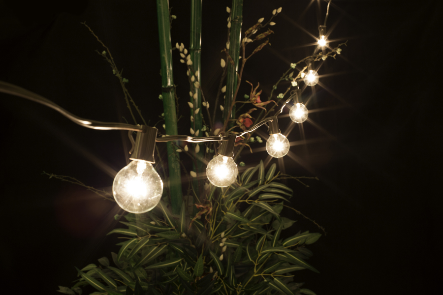 25 Socket Outdoor String Light Kit w/ G40 Globe Clear Bulbs (25FT, Expandable, Brown) on Sale ...