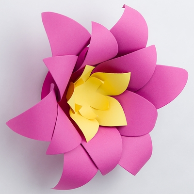 8 pre made fuchsia hot pink lotus paper flower wedding backdrop 8 pre made fuchsia hot pink lotus paper flower wedding backdrop wall decor 3d diy mightylinksfo