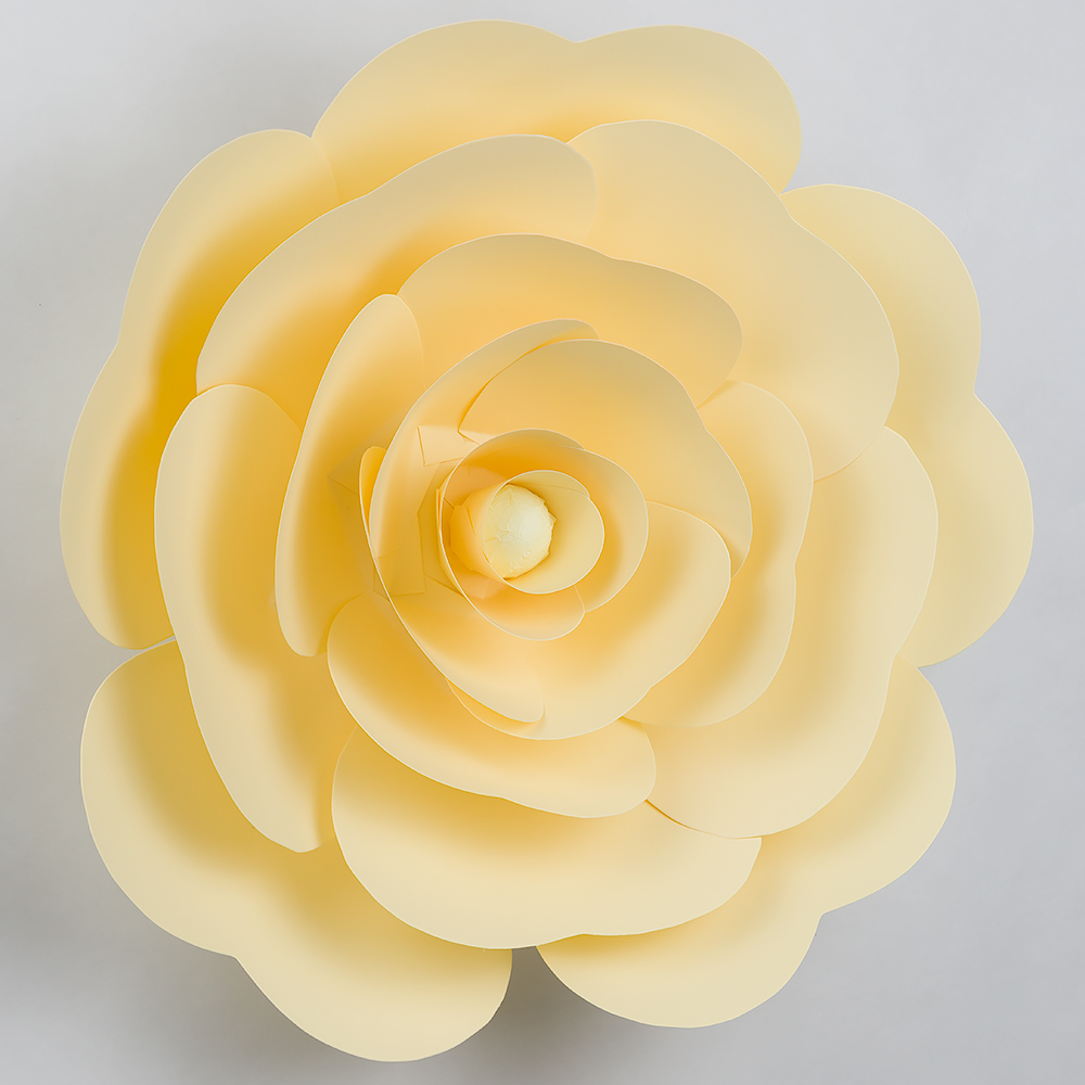 16 pre made vanilla cream beige ranunculus paper flower backdrop giant 16 pre made vanilla cream beige ranunculus paper flower wedding backdrop wall decor 3d diy mightylinksfo