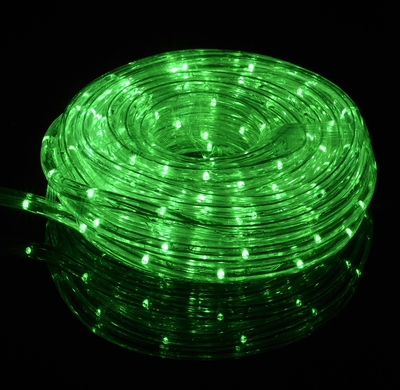 Green Fairy LED Outdoor String Rope Light (33FT, Clear Tube) on Sale Now! Plug In String Lights ...