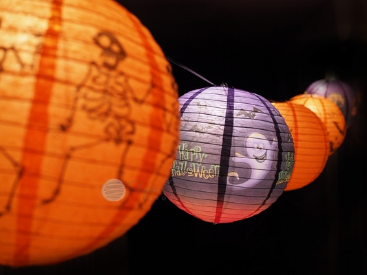 Paper Lantern String Lights Nz : 10/12
