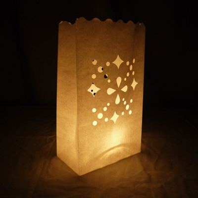 Multiple Shapes Paper Luminaries Luminary Lantern Bags Path Lighting 10 Pack On Sale Now At Paperlanternstore Com