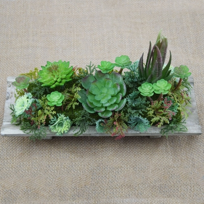 Realistic Artificial Succulents Plants In 10 Inch Wooden