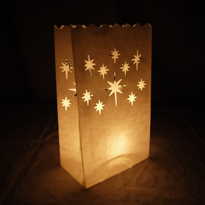 Starburst Paper Luminaries Luminary Lantern Bags Path