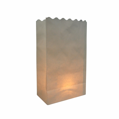 White Solid Color Paper Luminaries Luminary Lantern Bags