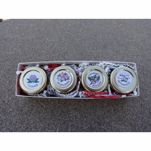 Gift Box - 4 pk. Hex Jars Natural Honey