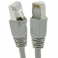 1 Foot Cat6A Shielded (SSTP) Ethernet Network Booted Cable Gray - Ships from California