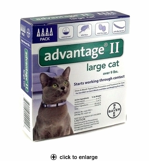 Advantage II Flea Control for Large Cats Over 9 lbs, 4pk