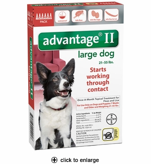 Advantage II Flea Control for Large Dogs 21-55 lbs, 6pk