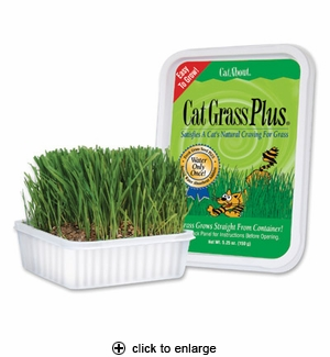 Gimborn Cat Grass Plus 150gm