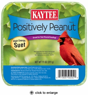 Kaytee Positively Peanut Suet 11 oz