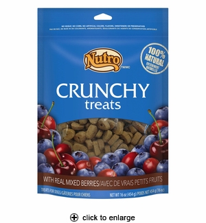 Nutro Crunchy Treats with Real Mixed Berries for Dogs 16oz