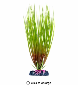 Penn-Plax Aqua Plant Sinkers Hair Grass Medium