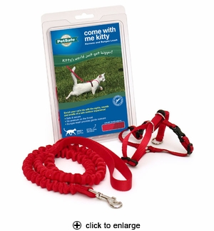 PetSafe Come With Me Kitty Kitten/Small Red