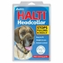 The Company of Animals Halti Headcollar for Dogs Black, Size 4