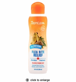 Best Natural Flea Bath For Dogs