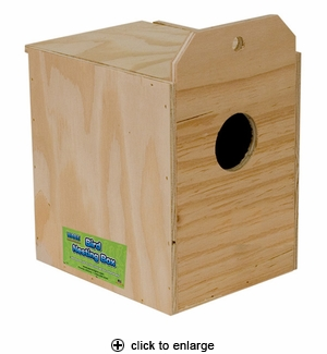 Ware Parakeet Nest Box, Reversed