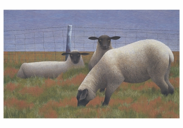 Alex Colville Notecard Folio