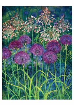 Alliums Notecard