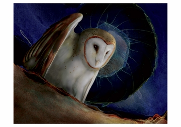 Barn Owls Boxed Notecards