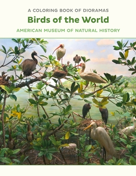 Birds of the World Dioramas Coloring Book
