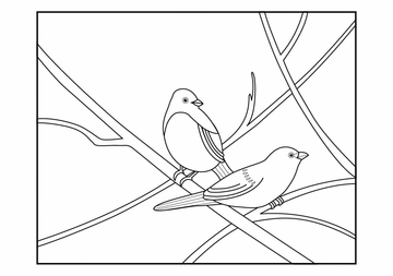 Birds: Susan Stockdale Coloring Cards