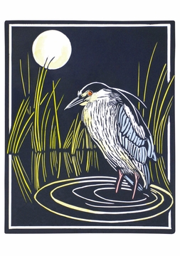 Molly Hashimoto: Black-crowned Night Heron Notecard