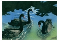 Black Swans Notecard