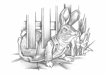 benjamin bunny coloring pages - photo#36