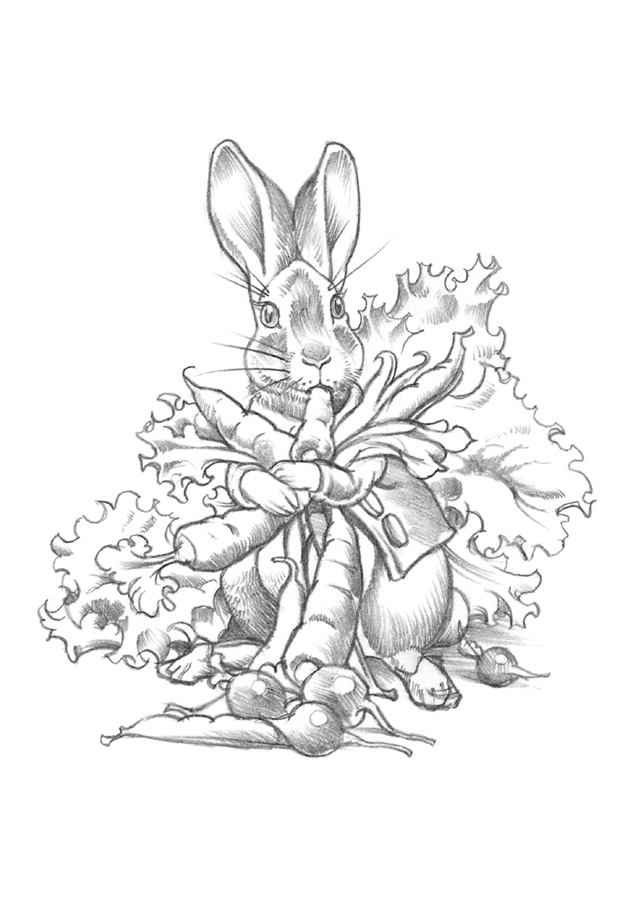 benjamin bunny coloring pages - photo#28