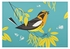 Charley Harper: Blackburnian Warbler Small Boxed Cards