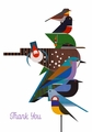 Charley Harper: Rain Forest Birds Boxed Thank You Notes