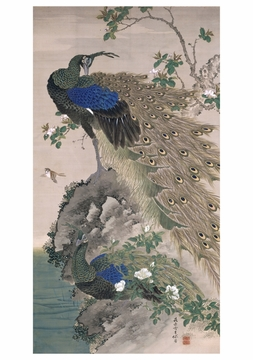 Cherry-Apple and Peacocks on Rock Notecard