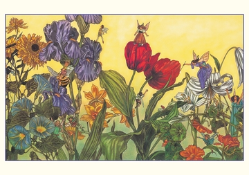Fairies: Paintings by Michael Hague Boxed Notecards
