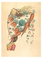 Fantastic Hairdress with Fruit and Vegetable Motif Postcard