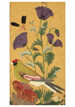 Finch, Poppies, Dragonfly, and Bee Birthday Card