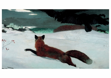 Fox Hunt Notecard