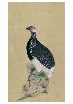 Game Bird Notecard