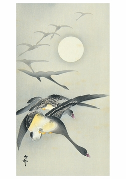 Geese and the Moon Notecard