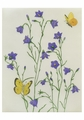 Harebells and Sulphurs Birthday Card
