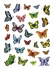 Janelle Dimmett: Butterflies Sticker Book