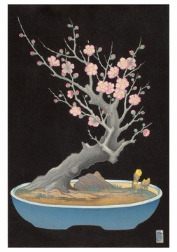 Japanese Dwarf Plum Notecard