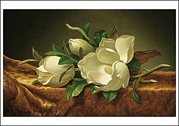 Magnolias on Gold Velvet Cloth Notecard