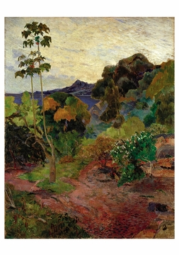 Martinique Landscape Notecard
