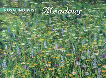 Meadows Boxed Notecards