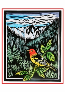Molly Hashimoto: Western Tanager Holiday Cards